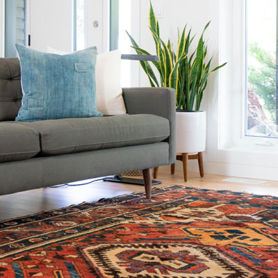 Area Rug Cleaning in Des Moines